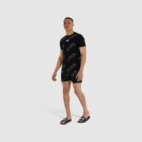 Пляжные шорты Ellesse Q2SU21 Fred swim short black