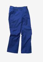 Сноубордические брюки Holden W18 M's Standard pant cobalt