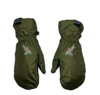 Сноубордические варежки Salmon Arms Spawn green